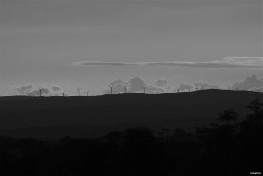 Black & White Wind Farm